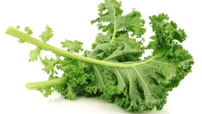 Kale 101.jpg - 1
