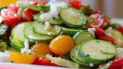 Raw Sumer Squash Salad