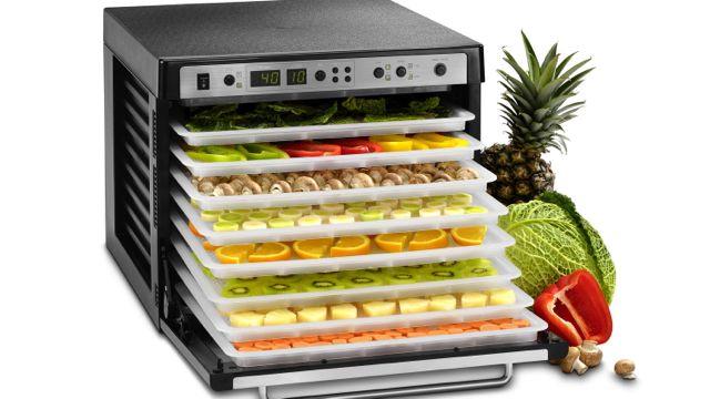 Vegetarian Food Dehydrator Recipes