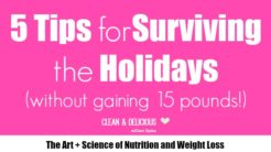 5 Tips for Surviving the Holidays