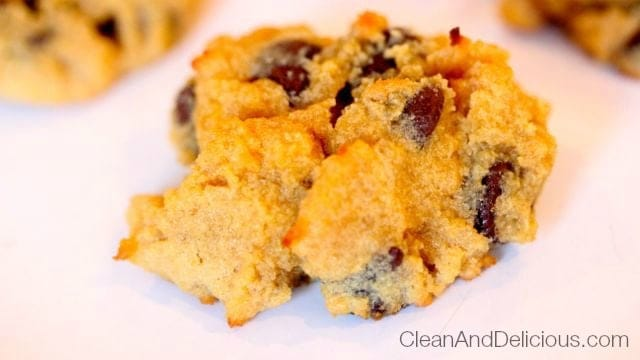 Coconut Flour Chocolate Chip Cookie
