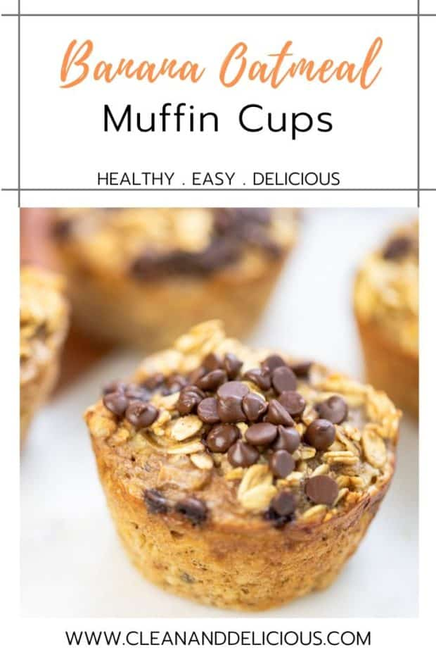 oatmeal muffin topped with chocolate chips